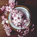 Sokos Hyvä Olo -keskus vaaleanpunaiset kukat